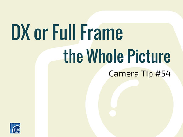 The difference between full frame and dx camera