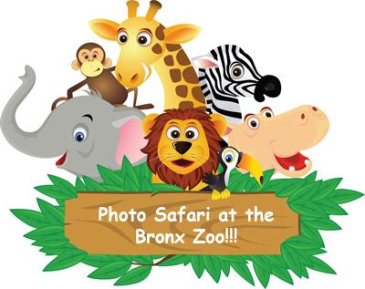 DIY Photo Safari #23: The Bronx Zoo - a Jungle Safari!