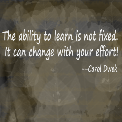 The ability to learn is not fixed. It can change with your effort. Carol Dwek, posted by NYCPhotoSafari.com
