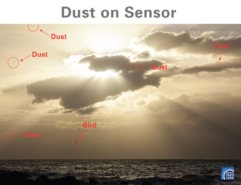 camera tips - dust on sensor