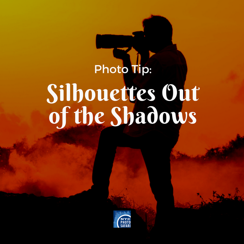 Photo Tip: Silhouettes Out of the Shadows
