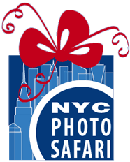 Photographer Classes Gift Cards
